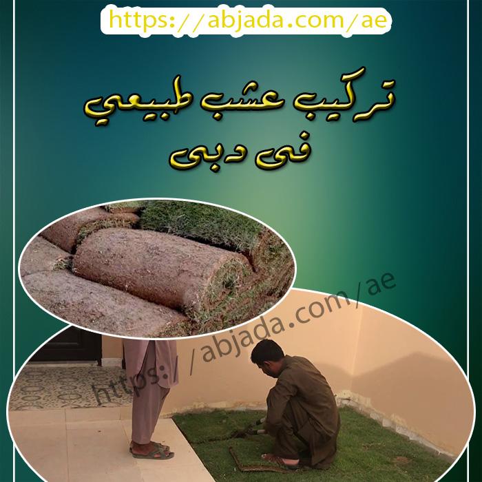 تركيب عشب طبيعي دبي
