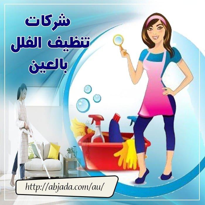 شركات تنظيف الفلل بالعين