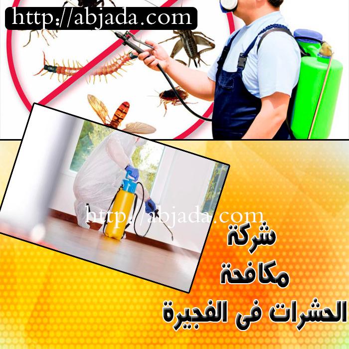 شركة مكافحة الحشرات في الفجيرة 0543690242