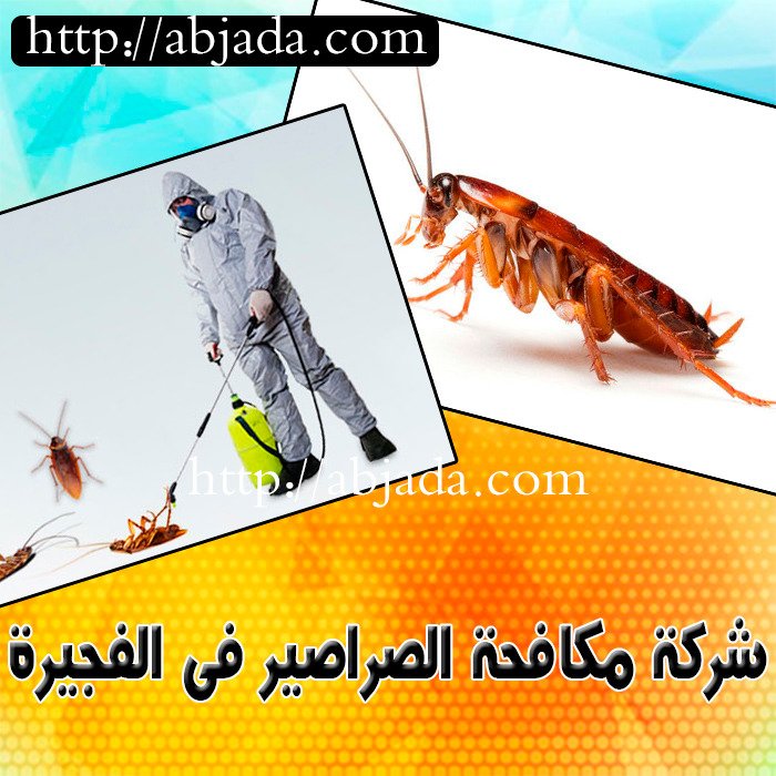 شركة مكافحة الصراصير في الفجيرة 0543690242